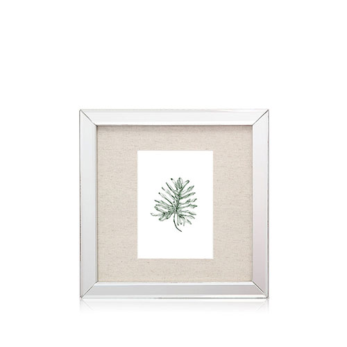 Marco espejado gráfica botánica